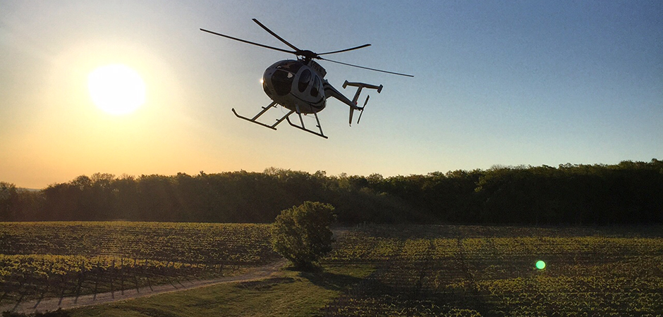 Helicopter Search & Rescue preserving grapes from frost